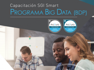 PROGRAMA BIG DATA (BDP) ELERNING