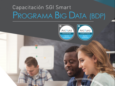 PROGRAMA BIG DATA (BDP) BLENDED